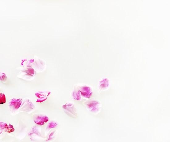 CC_Floral_H8