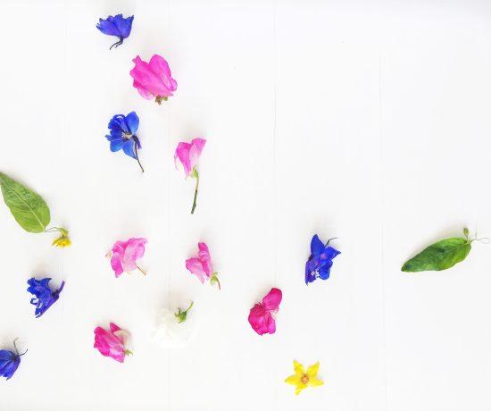 CC_Floral_V8