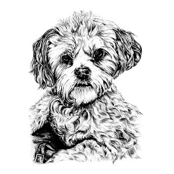 Small Crop Of Dog Coloring Pages For Adults
