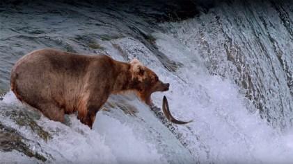 national-parks-adventure-3d-16x9-1024x576