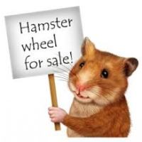You Can Still Be A Hamster If You Want...Just GET OFF the Wheel