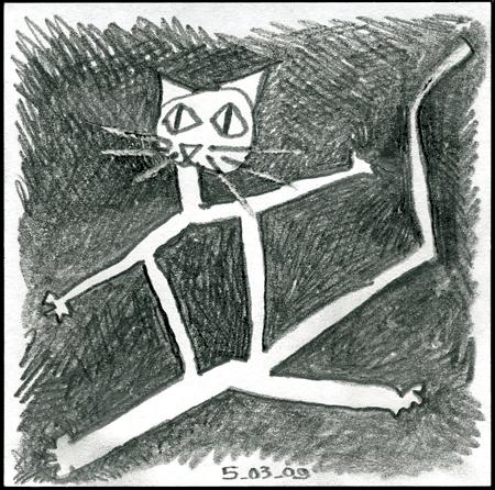 le chat frais du jour