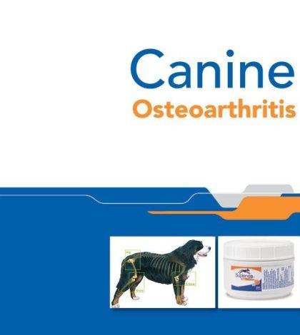 Canine Osteoarthritis ebook