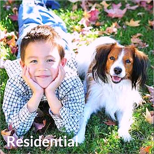 boy and his dog on the grass, looking at the camera