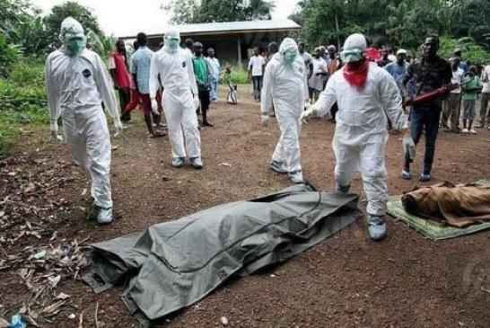 Nouvelle cartographie du virus : 45 jours d'urgence sanitaire…
