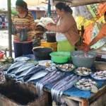 Nelayan Muncar Panen Tongkol