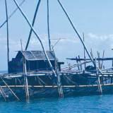 Salah-satu-bagan-milik-nelayan-yang-dibuat-menangkap-ikan-di-sekitar-perairan-Semenanjung-Sembulung,-Muncar,-kemarin