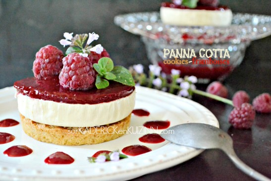 Panna cotta recette panna cotta noix de coco et framboise - Panna cotta noix de coco ...