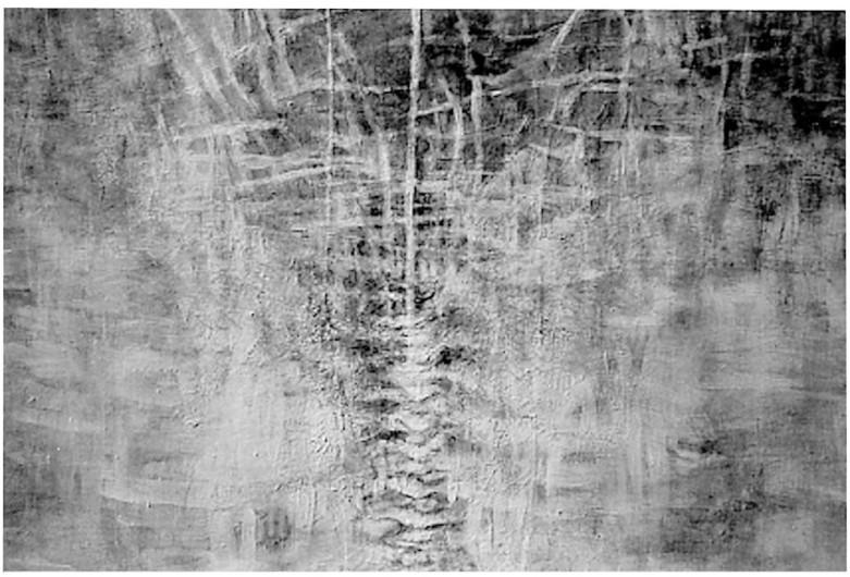 Sunghe Oh, lacerazione,,148x200
