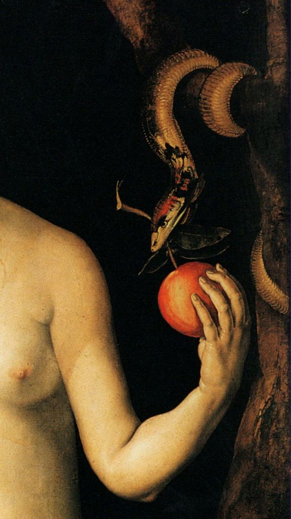 Eve (detail) by Albrecht Durer