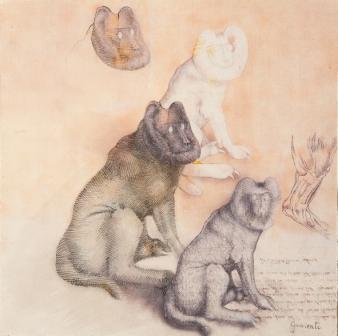 carlo-guarienti-cane, 2009