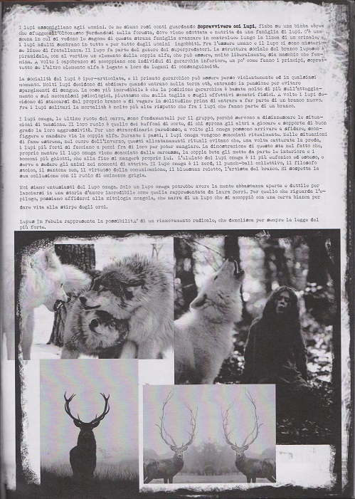 Fanzine Unknown Pleasures, numero 1, Lupus in Fabula, grafiche Valentina Mangieri, direz.art.LST,3