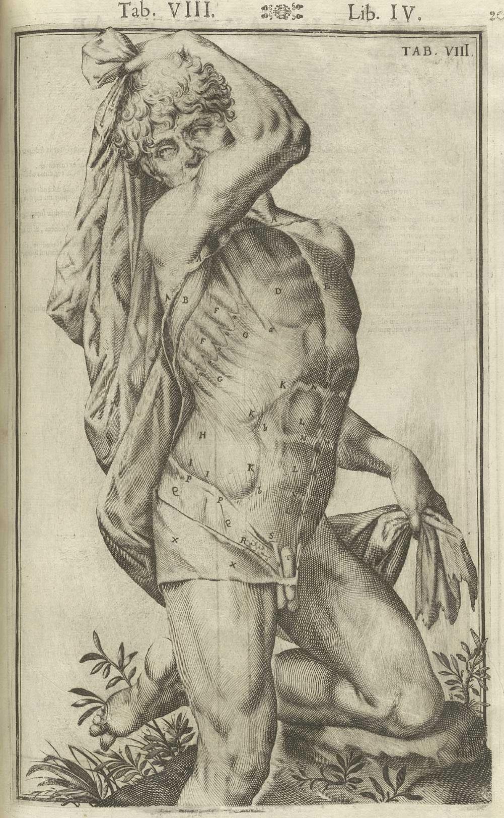 Giulio Cesare Casseri, Tabulae anatomicae, 1627, incisione di Francesco Valesio