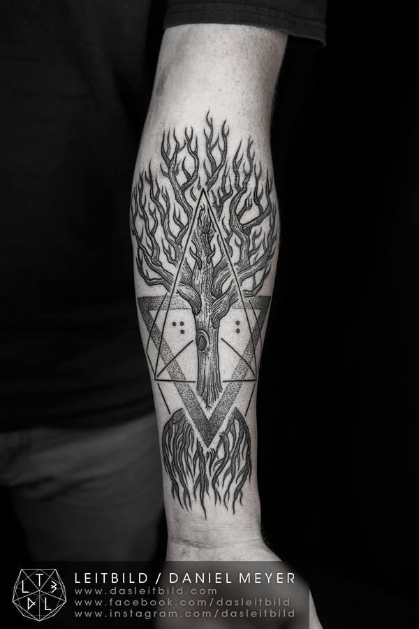 Daniel Meyer albero