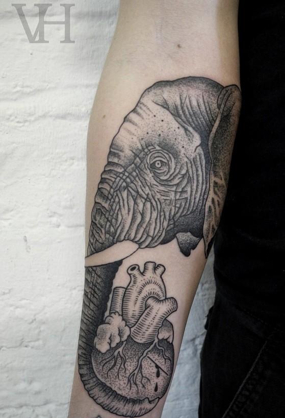 Valentin Hirsch Sacrocuore Elefante