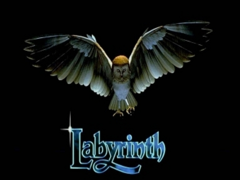 labyrinth-owl