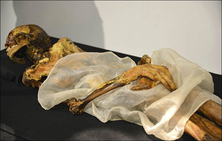 Princess Ukok' mummy in Anokhin museum, Gorno-Altaisk. Picture Alexander Tyryshkin