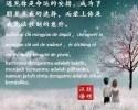 ungkapkan-kata-cinta-bahasa-mandarin
