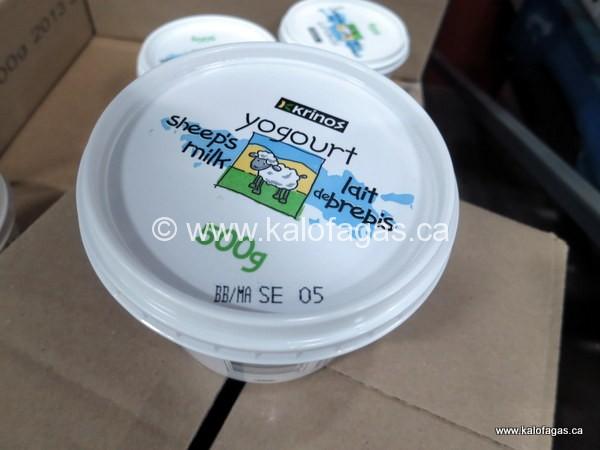 Greek style yogurt made with 100% Canadian sheep's milk