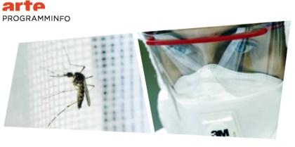 Mückenalam - Invasion der Plagegeister