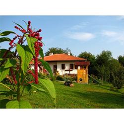 """Къща """"Утринна Роса"""" се намира в махала Марафелци, на 4 км от гр. Елена и на 2 км от язовир Йовковци. Махалата е сгушена в полите на Стара планина на височина 480 м."""