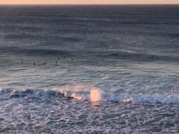 Surfers surfing at Bells Beach, Torquay, Great Ocean Road