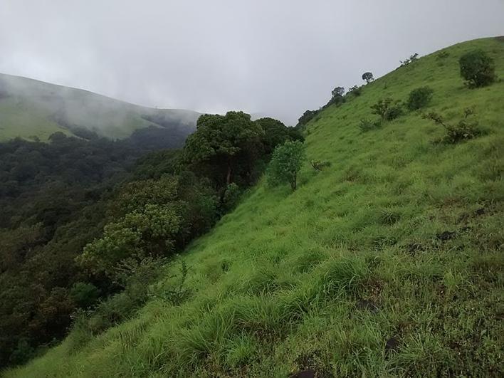 Kodachadri Hills, Shimoga, sightseeing Shimoga