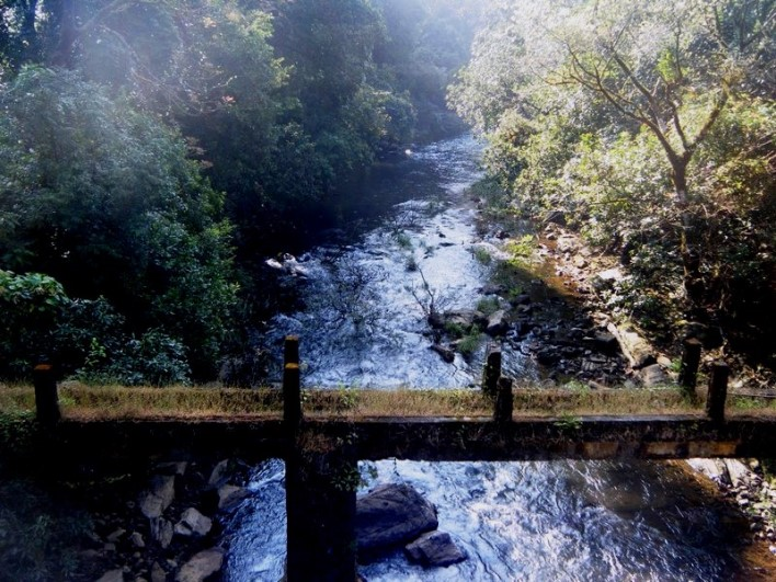 Pushpagiri Wildlife Sanctuary Trek. Photographer RajaPandian SP