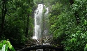 Kodachadri – A Spiritual Adventure for the Hardy