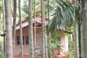Resorts near Chikmagalur: Kanthi Nivas