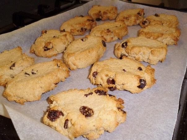 Vegan Raisin Cookies