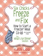 sixchicks-freeze+fix