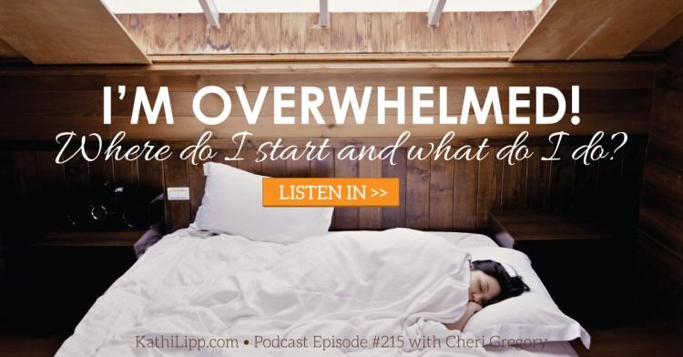 I'm-Overwhelmed-Blog