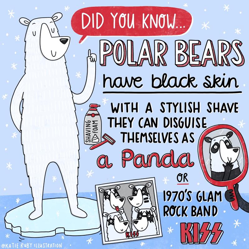Polar Bear Facts Illustration