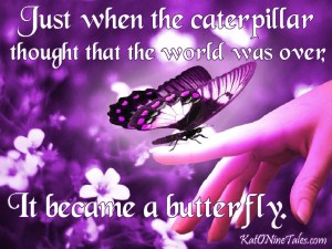 purple biutterfy, just when the caterpiller thought that the world was over