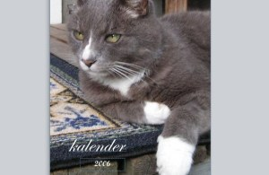 Gustavs kalender