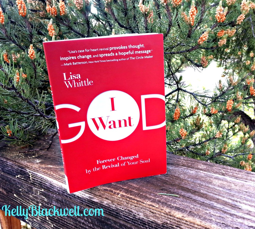 Book Review – I Want God by Lisa Whittle