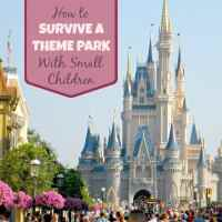 Theme Park With Small Children: 5 Survival Tips for Families