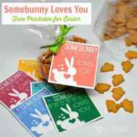 Somebunny Loves You: Free Printable for Easter
