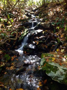Ahhh. . .the sound of running water when you're thirsty in the woods