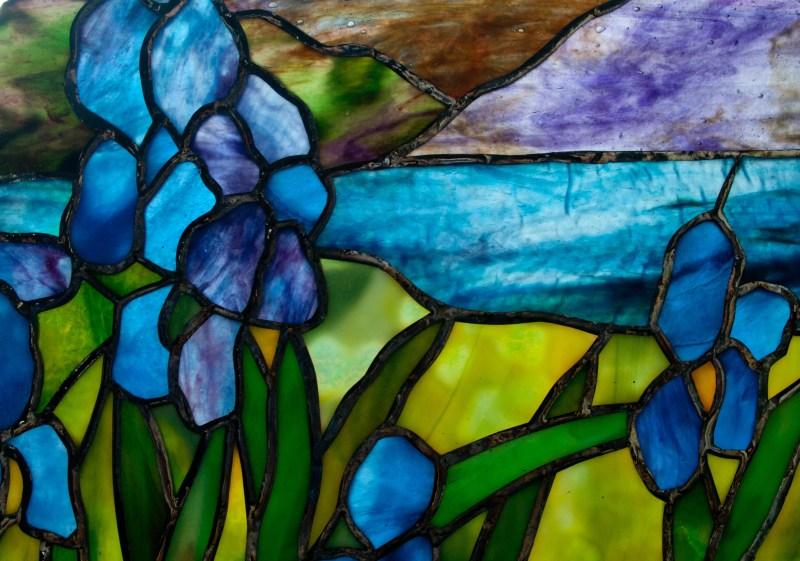 12 iris close up
