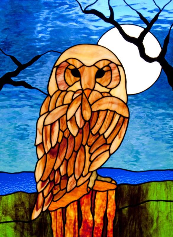 Owl in the Moonlight