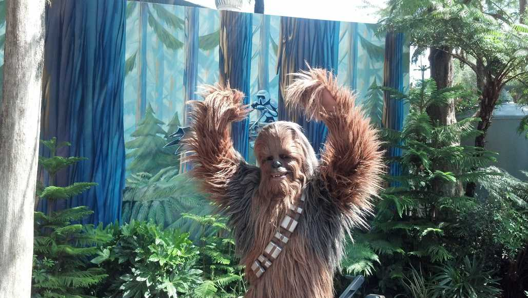 Ewok (Paploo) | KennythePirate.com