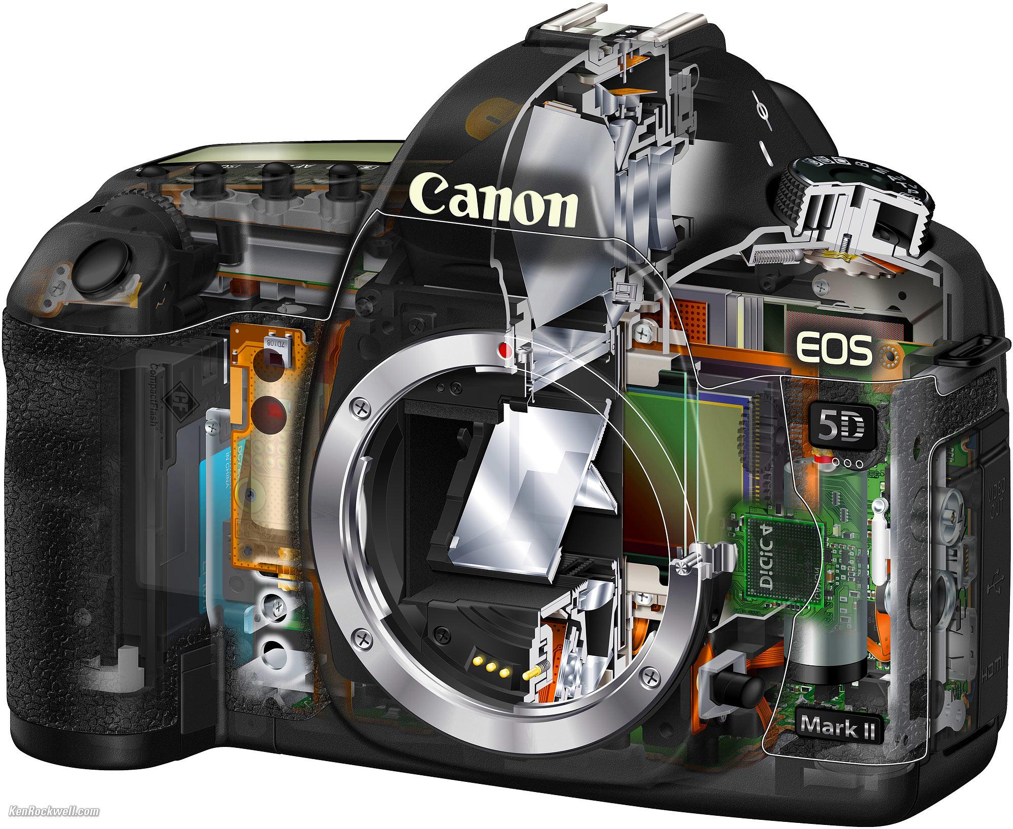 Fullsize Of Canon 5d Mark V