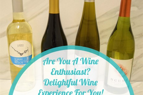 Are You A Wine Enthusiast? Delightful Wine Experience For You!