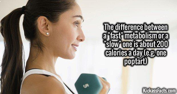 1889 Fast Metabolism