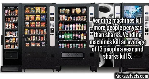 2491 Vending machines-Vending machines kill more people per year than sharks. Vending machines kill an average of 13 people a year and sharks kill 5.