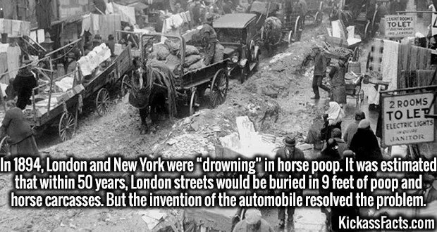 "3984 New York Streets-In 1894, London and New York were ""drowning"" in horse poop. It was estimated that within 50 years, London streets would be buried in 9 feet of poop and horse carcasses. But the invention of the automobile resolved the problem."