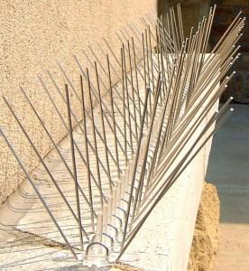 bird_spike_steel_ledge1b_600x642