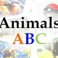 feature-animals